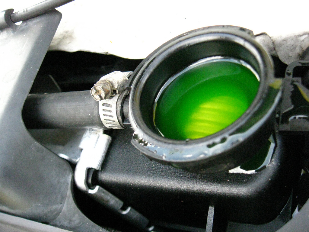 Can I Use Any Type Of Antifreeze In My Car?